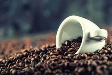 Kaffe hjälper de kognitiva funktionerna