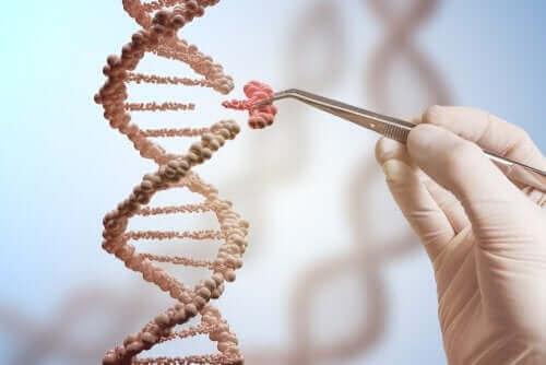Forskare plockar ut en gen ur DNA-kedja.