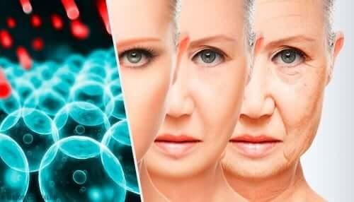 Åldringsprocessen hos en kvinna.