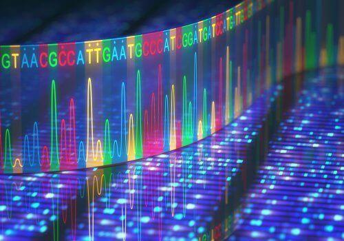 DNA i digital form