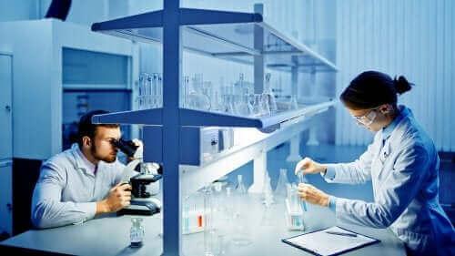 Fler studier av olika coronavirusstammar måste utföras för att ge mer konkreta resultat