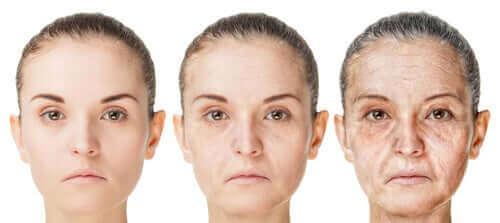 När börjar vi åldras? Telomererna har svar