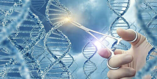 Vad är genmutationer? Olika typer och exempel