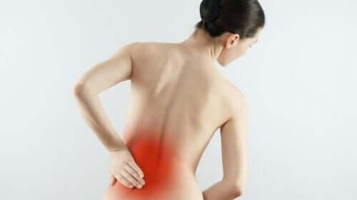 artros i rygg