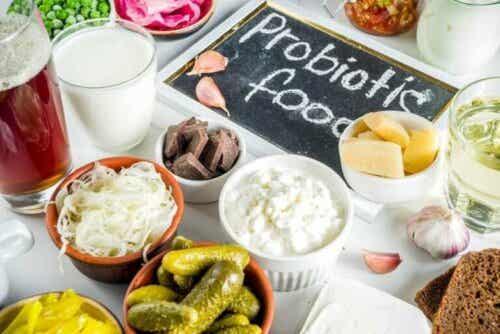 Vad är skillnaden mellan prebiotika och probiotika?