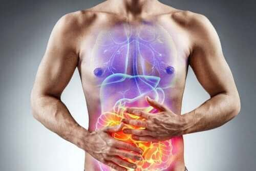 Bild på mag-tarmsystem hos en person med fruktosintolerans.