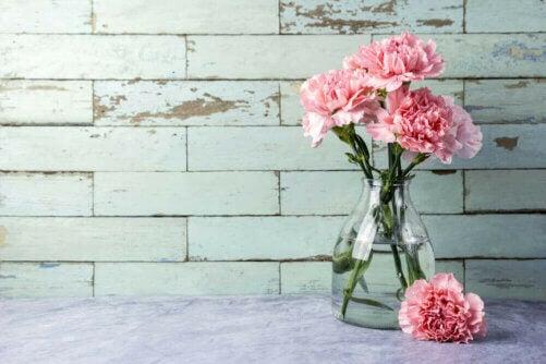 Tre snabba sätt att rengöra dina glasvaser