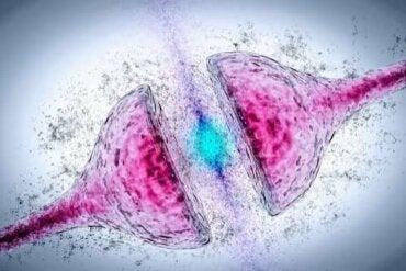 Donepezil vid Alzheimers sjukdom - effekter och varningar
