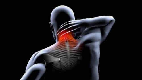 Kontrakturer i musklerna: förebyggande och behandling