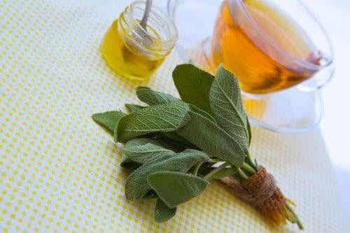 Salvia och honung för att behandla små sår