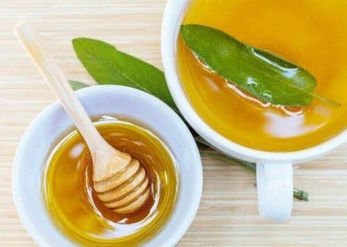 salvia och honung