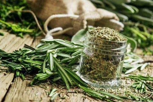 örtteer för anemi: rosmarin