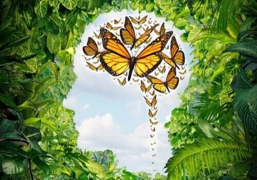 Logoterapi inom psykologi: illustration av fjärilar i huvudet