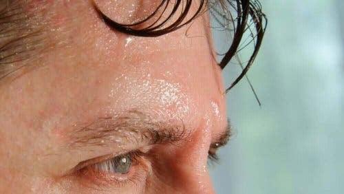 effekterna som värme kan ha på kroppen: svettig panna