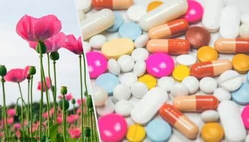 Vallmo och lakemedel i pillerform