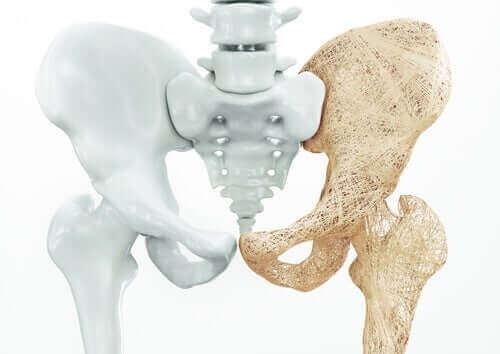 Bäckenet är en del av skelettet.