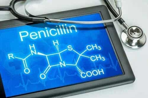 Hur penicillin fungerar i kroppen
