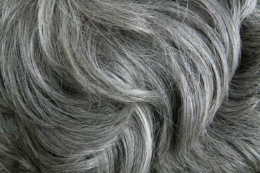 Stress orsakar grått hår enligt studie