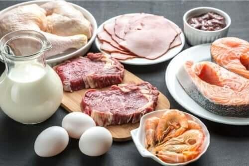 Olika animaliska protein upplagd på ett bord.