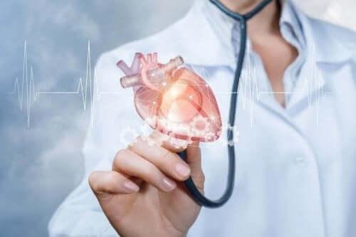 En läkare håller ett hjärta i sin hand.