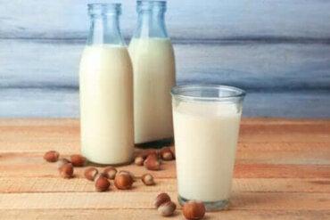 Egenskaperna och fördelarna med hasselnötsmjölk