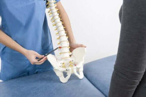Skolios hos barn: Läkare visar en modell av ryggraden.