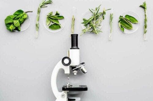mikroskåp och växter