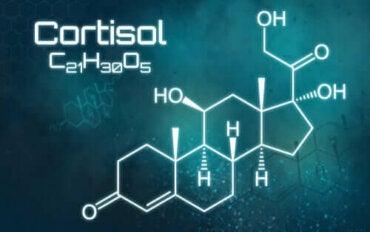 Överskott av kortisol: allt du behöver veta