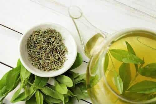 Visste du att grönt te förlänger livet?