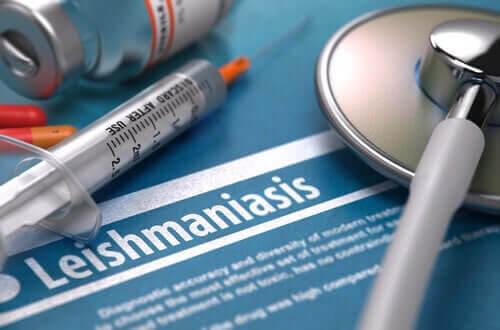 Är sjukdomen leishmaniasis smittsam?
