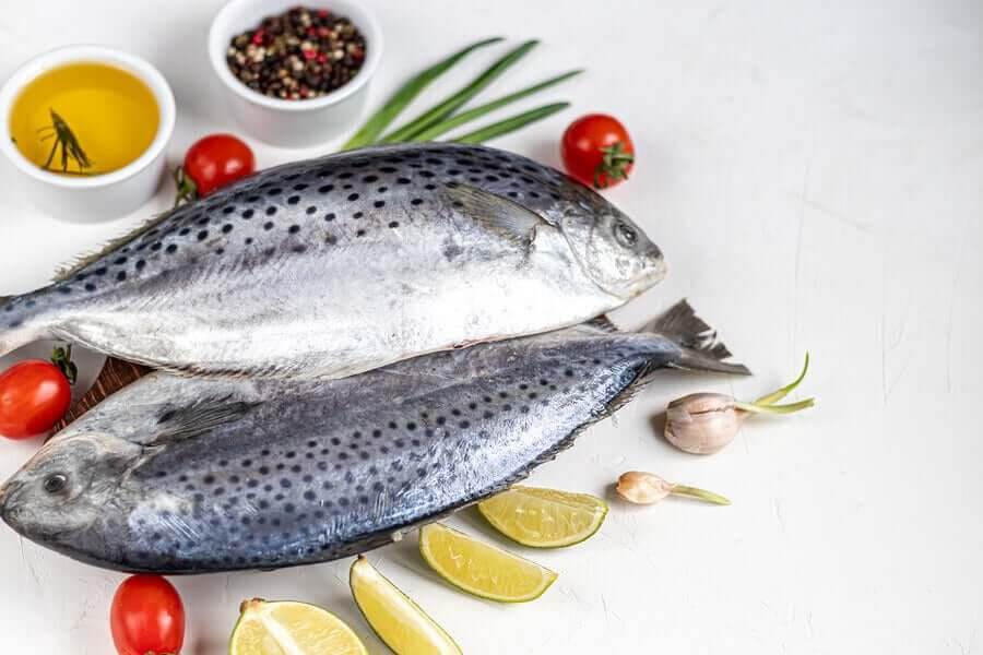dieter stöds av vetenskapen: fet fisk