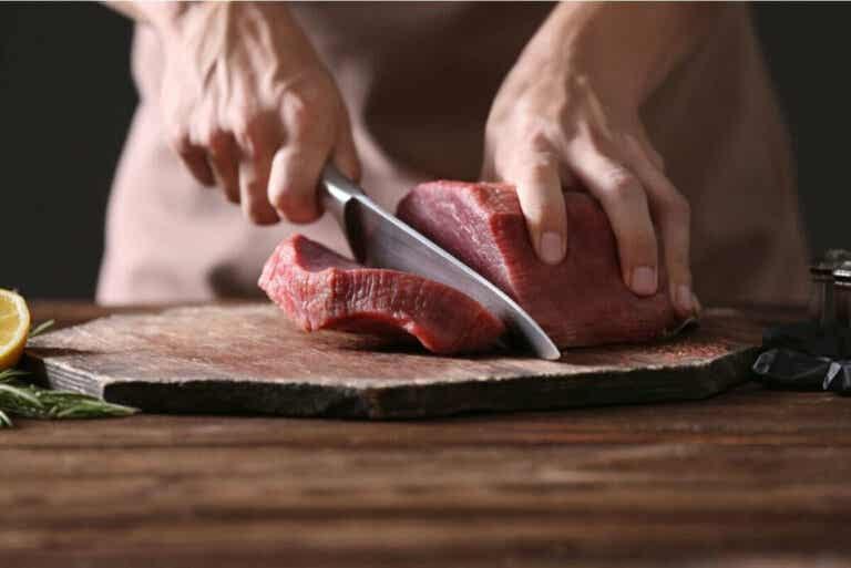 Vad är den karnivora dieten?