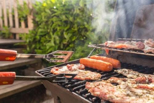 den karnivora dieten: grillar korv och annat kött