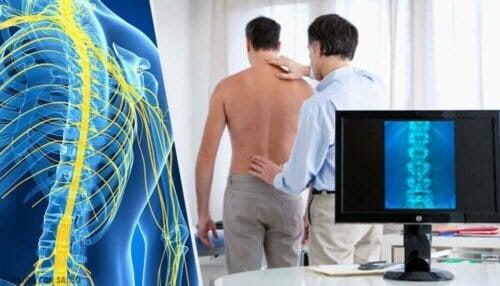 magnetterapi för multipel skleros: läkare undersöker persons rygg