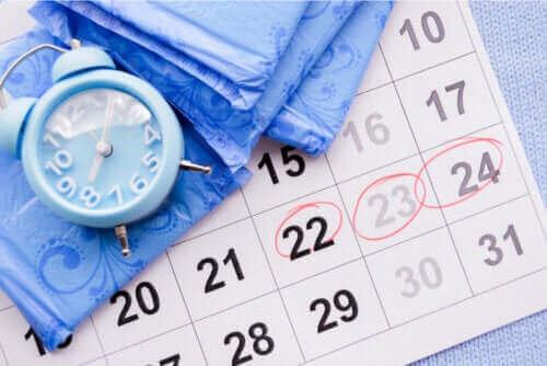 Graviditet vid amenorré: är det möjligt?