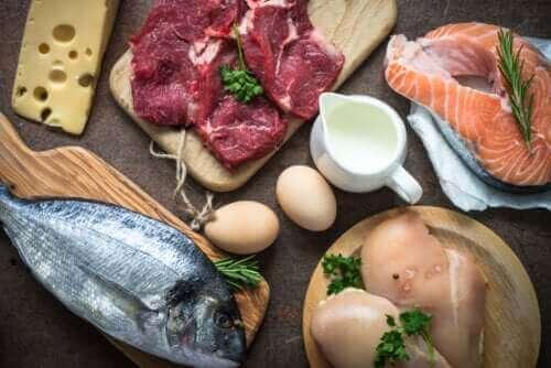 Varför är det så viktigt att få i sig proteiner?