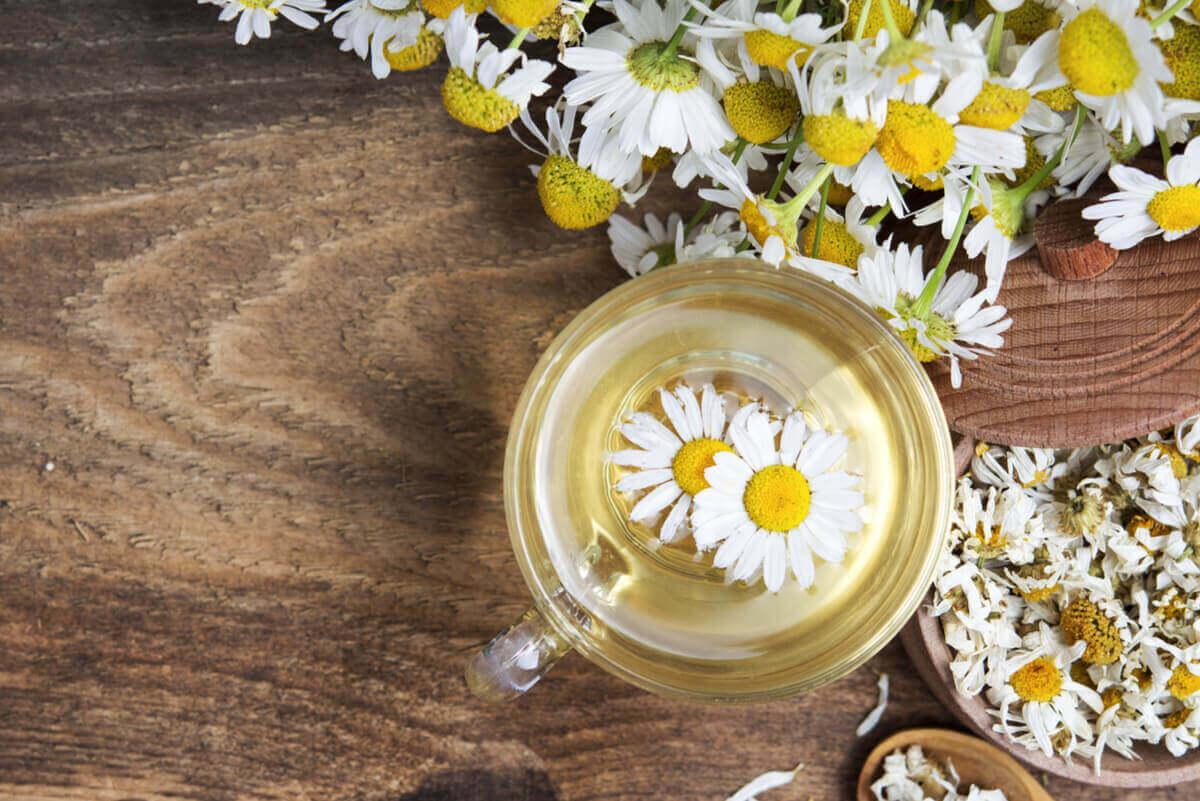 fördelar med kamomillte med blommor