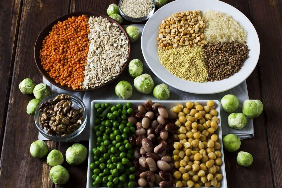 få i sig proteiner: växtbaserade proteinkällor