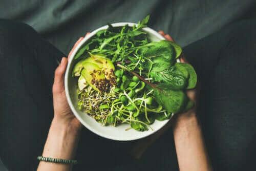 Skillnaderna mellan vegan, vegetarian och flexitarian