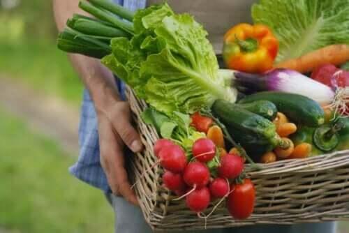 mat med lågt natriuminnehåll