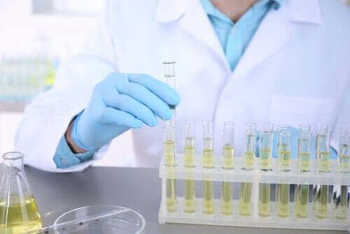 Odling av urin: Vad är det och vad används det till?