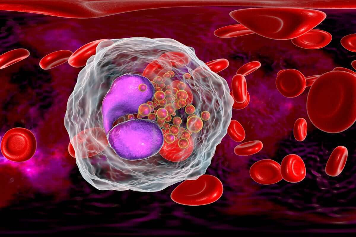 immuncell