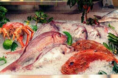 Allt om effekterna av kvicksilver från fisk
