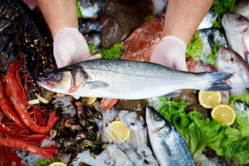 kvicksilver fisk