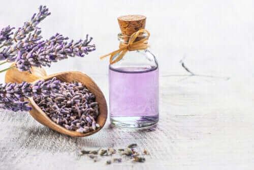 De 6 bästa medicinalväxterna som stöds av vetenskapen