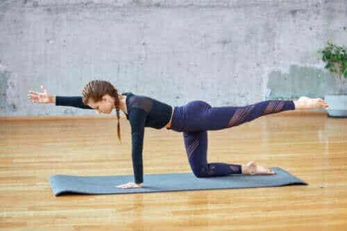 Yogaövningen fågelhunden: Hur man utför den på rätt sätt