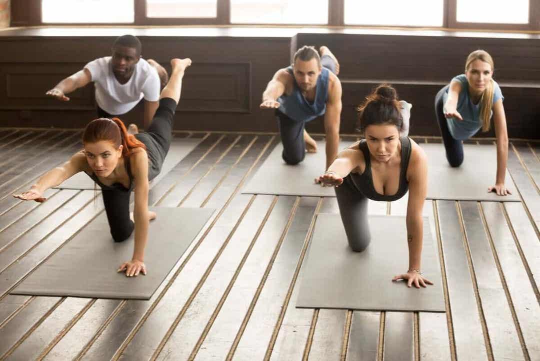 klass gör Yogaövningen fågelhunden