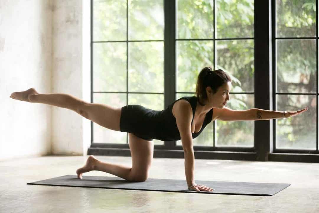 Yogaövningen fågelhunden