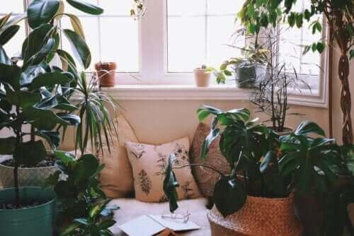 Idéer för att skapa en avkopplande hörna hemma