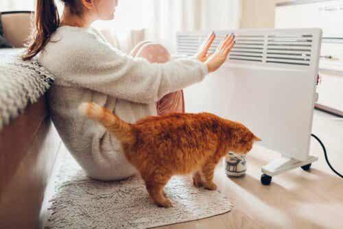 En kvinna och en katt värmer sig vid ett el-element